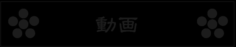 choice3_動画